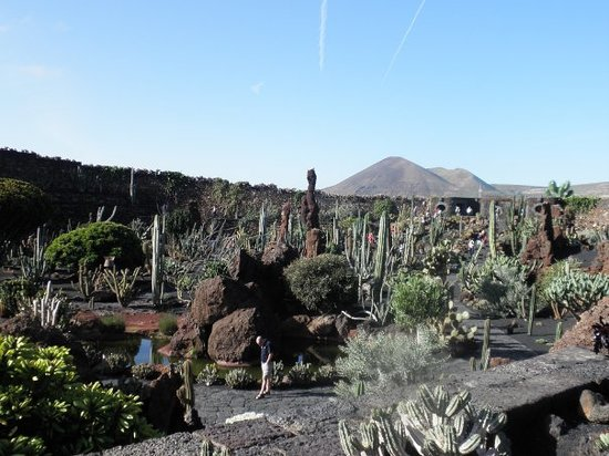 Jardin de cactus guatiza 2018 all you need to know for Jardin cactus lanzarote