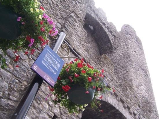 Ντροχέντα, Ιρλανδία: drogheda. mestna vrata.