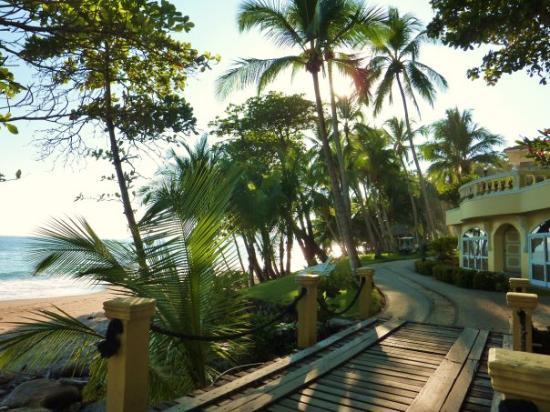 Тамбора, Коста-Рика: Tango Mar, Tambor