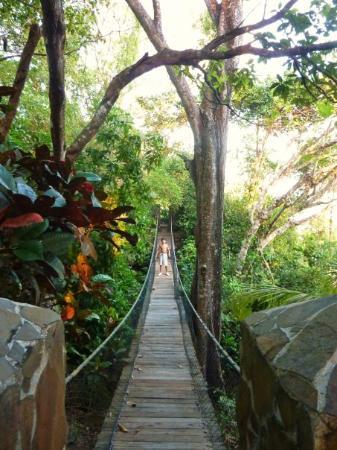 Tambor, Costa Rica: Pont suspendu entre la villa et la réception de l'hotel