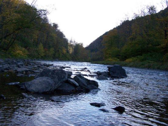 Pennsylvania: Pine Creek at the bottom of the canyon.