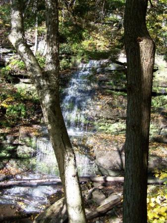 Pine Creek Gorge: One of the many beautiful waterfalls along the Turkey Path