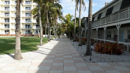 The Naples Beach Hotel & Golf Club: Tree lined walkway