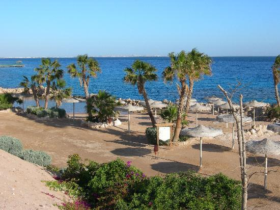 Albatros Citadel Resort - Sahl Hasheesh: vue d'une des plages
