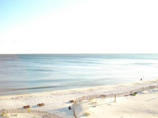 Gulf Shores, AL: How weird is this?  There are no waves in the ocean!