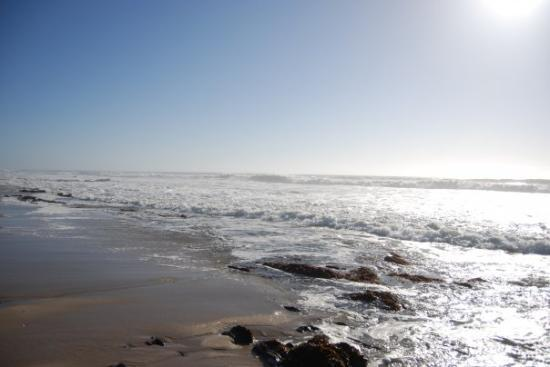 Skeleton Coast Park, Namibia: Skeleton Coast beach vista.