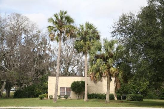 Gainesville Resmi