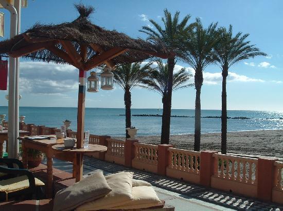 Hotel Roc Lago Rojo : Palm 5