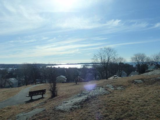 The Vista: View from Govs. Park downtown