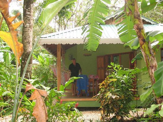 El Pequeno Gecko Verde: Our cottage