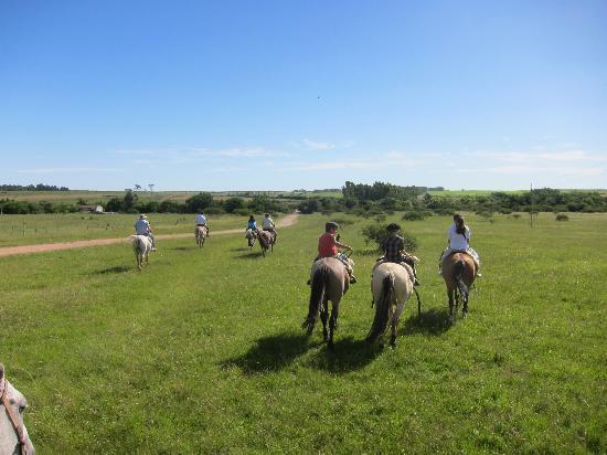 San Pedro de Timote: Riding horses