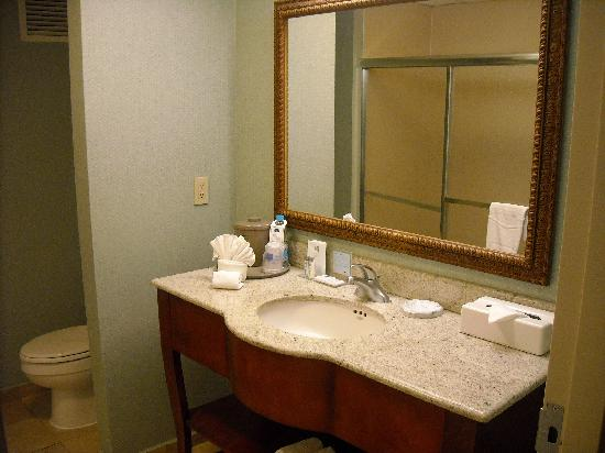 Hampton Inn by Hilton Tampico Aeropuerto: Bathroom - A lot of room, water was hot w/ good pressure