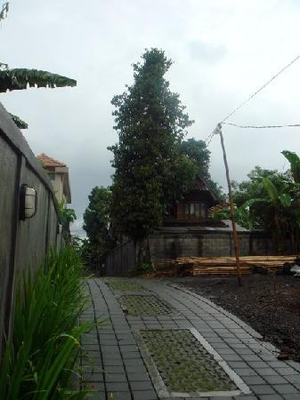 Villa di Abing: Path to Town