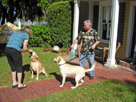Mount Dora Historic Inn: Friendly owner and pooches!