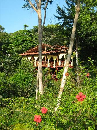 El Remanso Lodge: The Lodge