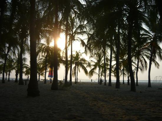 Irotama Resort: vista de la playa en irotama hotel