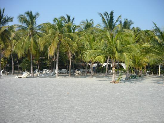 Irotama Resort: la playa en irotama
