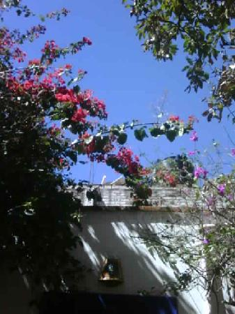 Casita de las Flores: Blue sky above the casita