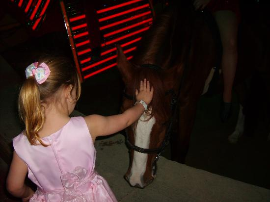 Delavan, WI : after the show my daughter got to meet and pet the horses