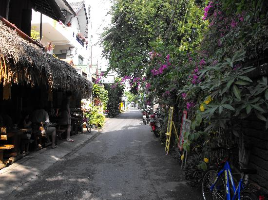 Rendezvous Guest House: Soi 5 - looking towards the guesthouse