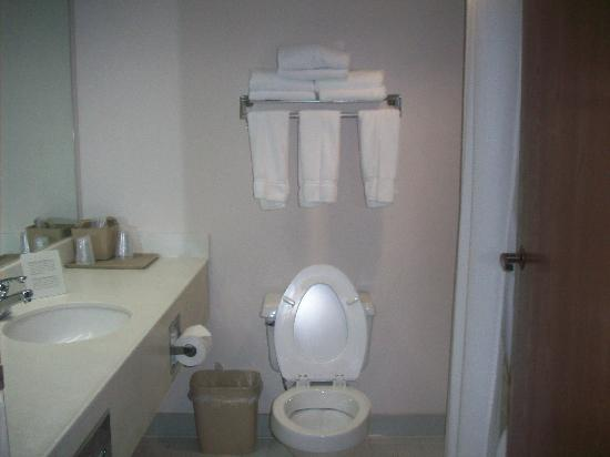 Holiday Inn Express Middlesboro: Bathroom