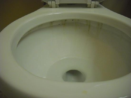 Grand View Inn and Suites: Dirty Toilet