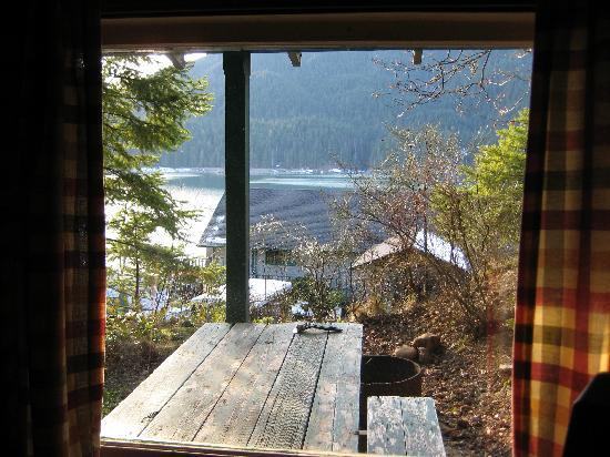 Lake Cushman Resort: View from our cabin window.