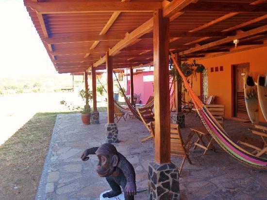 Buena Onda Beach Resort: Watch for monkeys