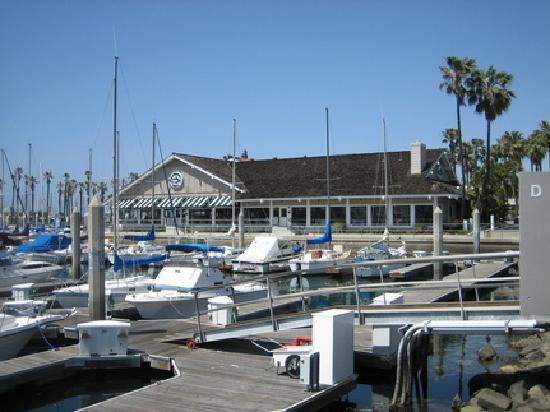 Bluewater Grill Seafood Restaurant Oyster Bar Redondo Beach Menu Prices Reviews Tripadvisor