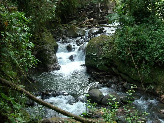 Peace Lodge: Beautiful areas along trails