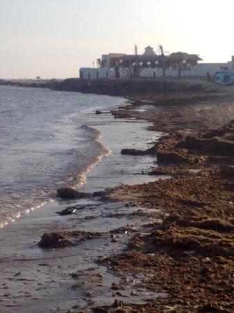 Seaside: rien a rajouter!!