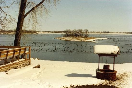 Correll, MN: 1990