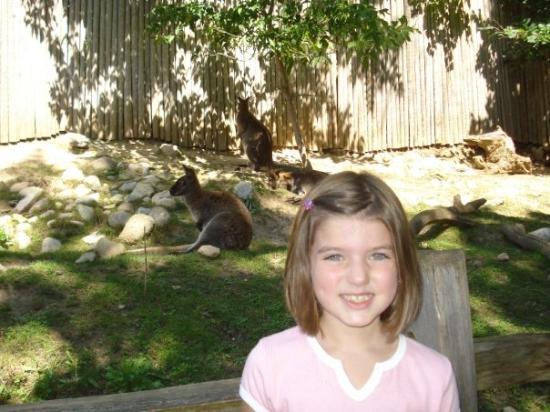 Foto de John Ball Zoo