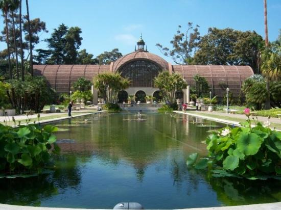 In Balboa Park... Reflecting Pool With The Botanical Garden In The  Background.