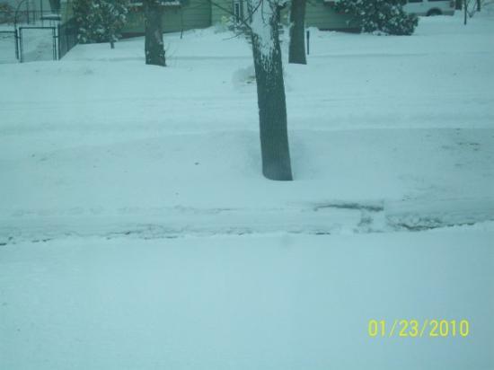 Bottineau, ND: Pretty deep  a hard on the back shoveling!!!!!