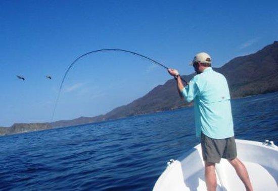 Papagayo Gulf Sport Fishing - North Pacific Tours : Fly Fishing