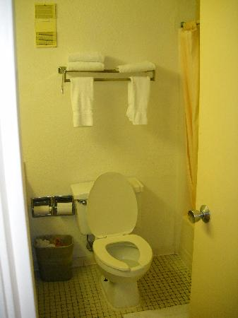 Royal Celebration Inn on Lake Cecile: Bathroom
