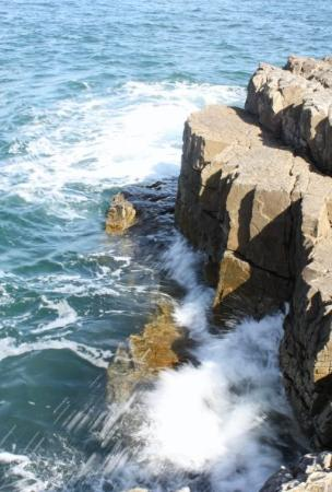 Hermanus Whale Cruises: Hermanus, not only  a beautiful view, but a great place to do some whale watching