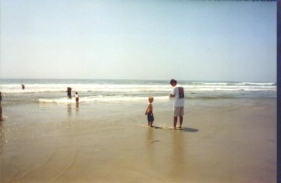 South Carlsbad State Beach: Carlsbad Beach, California