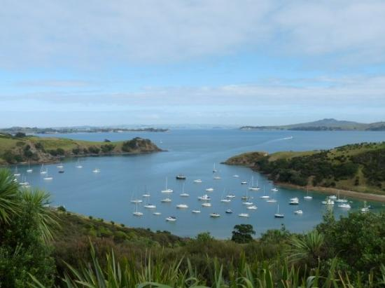 Waiheke-øya, New Zealand: The bay where we docked from the road above.