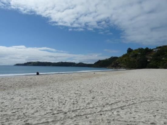 Waiheke Island, New Zealand: Beach at Waiheke.