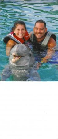 Bilde fra Sea Lion Encounter at Blue Lagoon