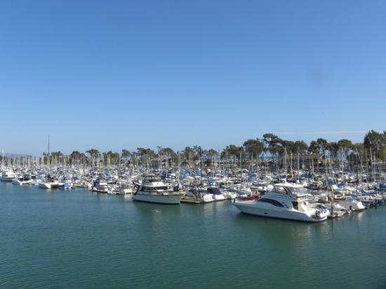 Dana Point Harbor: The harbour.