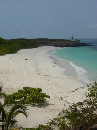 Posada del Mar : Isla Iguana