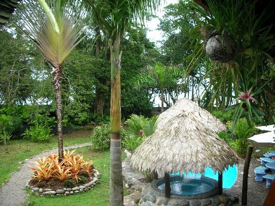 Hotel Banana Azul: Gardens