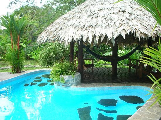 Hotel Banana Azul: Pool