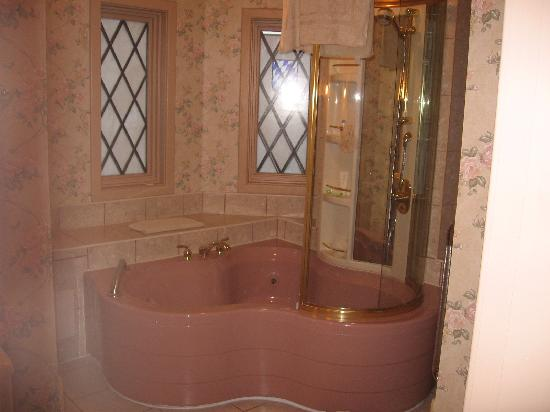 Shepherdstown, WV: jacuzzi and shower