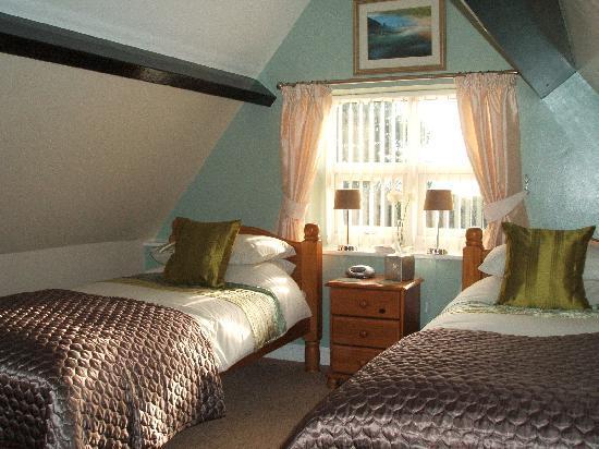 Launceston Villa Bed & Breakfast: Lovely twin room
