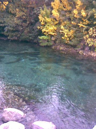 Hosteria Portal De Piedra: A pocos minutos Río Correntoso