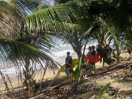 Casa Islena Inn: Surfers waiting to head out